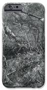 Capture Of Nat Turner, American Rebel IPhone Case by Photo Researchers