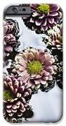 Chrysanthemum 3 IPhone Case by Skip Nall