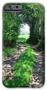 Country Road IPhone Case by Carol Groenen