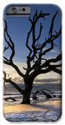 Driftwood Beach At Dawn IPhone Case by Debra and Dave Vanderlaan