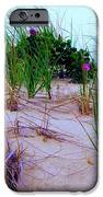 Dunes IPhone Case by Susan Carella