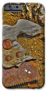 Elements IPhone Case by Cheryl Young