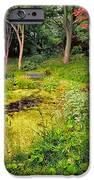 English Garden  IPhone Case by Adrian Evans