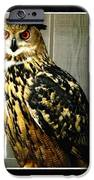 Eurasian Eagle-owl With Oil Painting Effect IPhone Case by Rose Santuci-Sofranko