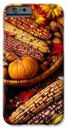 Fall Harvest IPhone Case by Garry Gay
