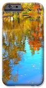 Fall Reflections IPhone Case by Ana Maria Edulescu