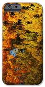 Fall Textures In Water IPhone Case by LeeAnn McLaneGoetz McLaneGoetzStudioLLCcom