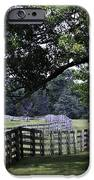 Farmland Shade Appomattox Virginia IPhone Case by Teresa Mucha