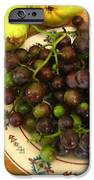 First Harvest IPhone Case by Deb Martin-Webster
