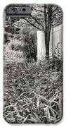 For The Love Of Dog Bw IPhone Case by JC Findley