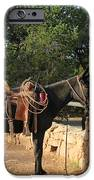 For The Ride Down IPhone Case by Heidi Smith