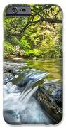 Forest Jewel IPhone Case by Debra and Dave Vanderlaan