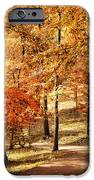 Golden Path IPhone Case by Jai Johnson