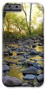 Golden Reflection In The Canyon Of  Light IPhone Case by Heather Kirk