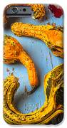 Gourds On Wooden Blue Board IPhone Case by Garry Gay