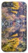 Grand Reflections IPhone Case by JC Findley