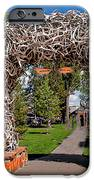 Jackson Hole IPhone Case by Robert Bales