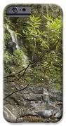 Laurel Falls 6226 IPhone Case by Michael Peychich