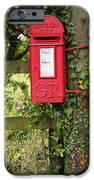 Letterbox In A Hedge IPhone Case by Louise Heusinkveld