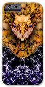 Lion's Roar IPhone Case by Christopher Gaston