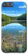 Long Branch Marsh IPhone Case by Adam Jewell