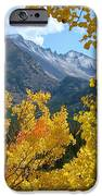 Long's Peak And The Keyboard Of The Winds Amidst Aspen Gold IPhone 6s Case by Margaret Bobb