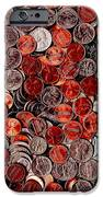 Loose Change . 8 To 12 Proportion IPhone Case by Wingsdomain Art and Photography