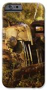 Lost In Time IPhone Case by Carla Parris