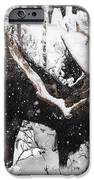 Male Moose Grazing In Snowy Forest IPhone Case by Philippe Henry
