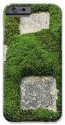 Moss And Stepping Stones IPhone Case by Rob Tilley