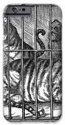 Nast: Tweed Cartoon, 1871 IPhone Case by Granger
