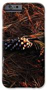 Needles Cones And Oak Leaf IPhone Case by Larry Ricker