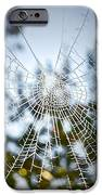 Pablo's Web IPhone Case by Gwyn Newcombe