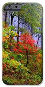 Painted Autumn IPhone Case by Carolyn Wright