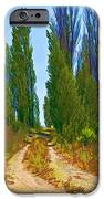 Paradise Road IPhone Case by Randall Nyhof