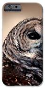 Rain Owl IPhone Case by LeeAnn McLaneGoetz McLaneGoetzStudioLLCcom