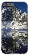 Reflections With Ice IPhone Case by Antarctica