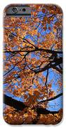 Right Place Right Time IPhone Case by Lyle Hatch