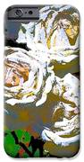 Rose 126 IPhone Case by Pamela Cooper