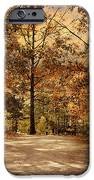 Secluded Entrance IPhone Case by Jai Johnson