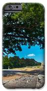 Shady Hilltop IPhone Case by Paul W Faust -  Impressions of Light