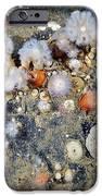 Shaggy Mouse Nudibranchs IPhone Case by Alexander Semenov