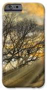 Skeletons At Sunset IPhone Case by Debra and Dave Vanderlaan