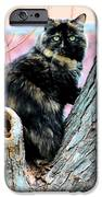 Snickers Caught In The Act IPhone Case by Cheryl Poland
