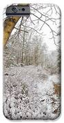Snowy Watercolor IPhone Case by Debra and Dave Vanderlaan