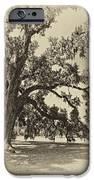 Southern Comfort Sepia IPhone Case by Steve Harrington