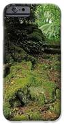 Steps In The Wild Garden, Galnleam IPhone Case by The Irish Image Collection