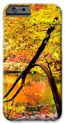 The Final Bough IPhone Case by Kristin Elmquist