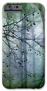 The Forest Cathedral IPhone Case by Judi Bagwell