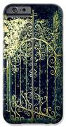 The Gate In The Grotto Of The Redemption Iowa IPhone Case by Susanne Van Hulst